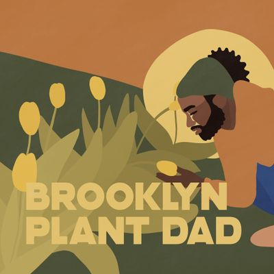 Avatar for Brooklyn Plant Dad