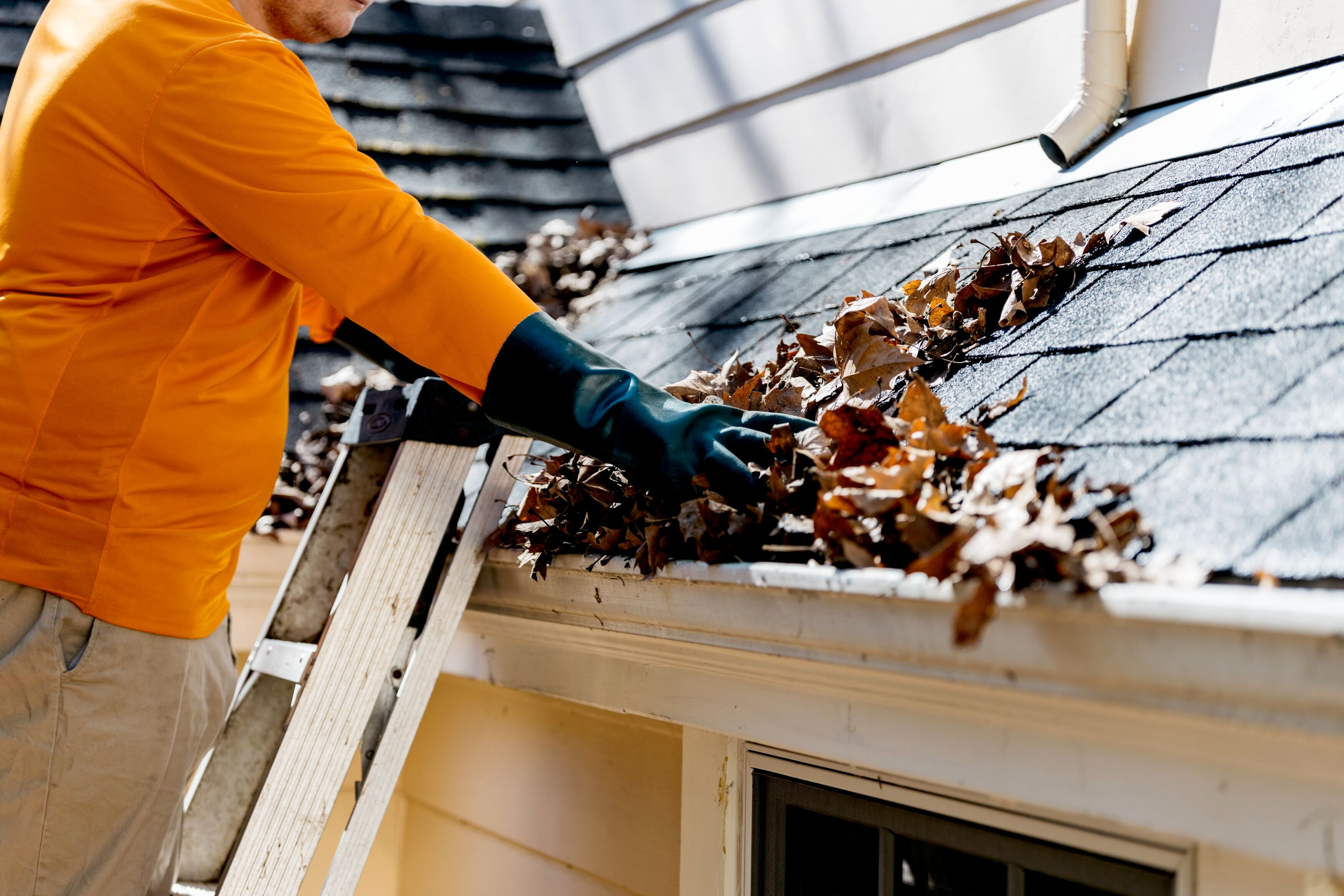 removing leaves from gutter