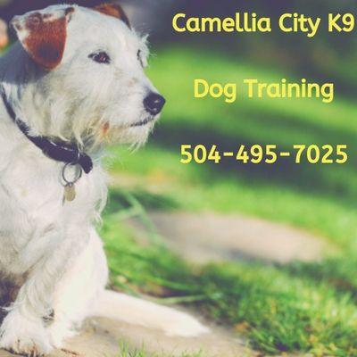 Avatar for Camellia City K9
