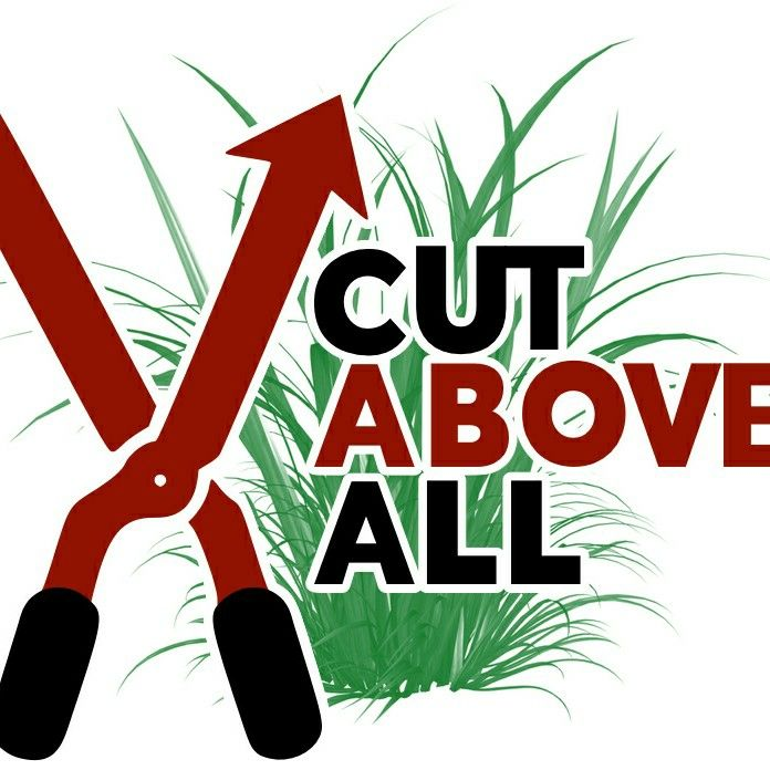 A Cut Above All