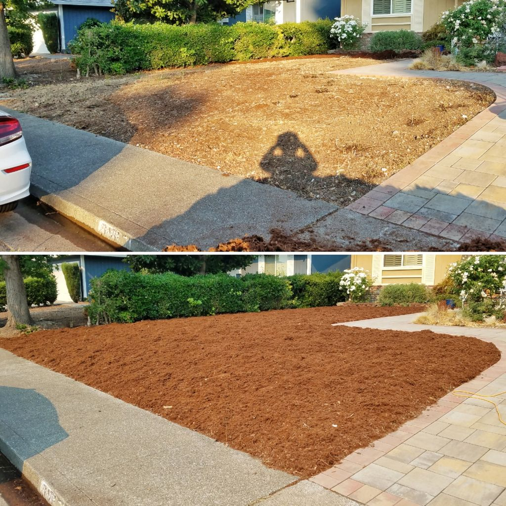 Weed Mitigation and Mulch Laying