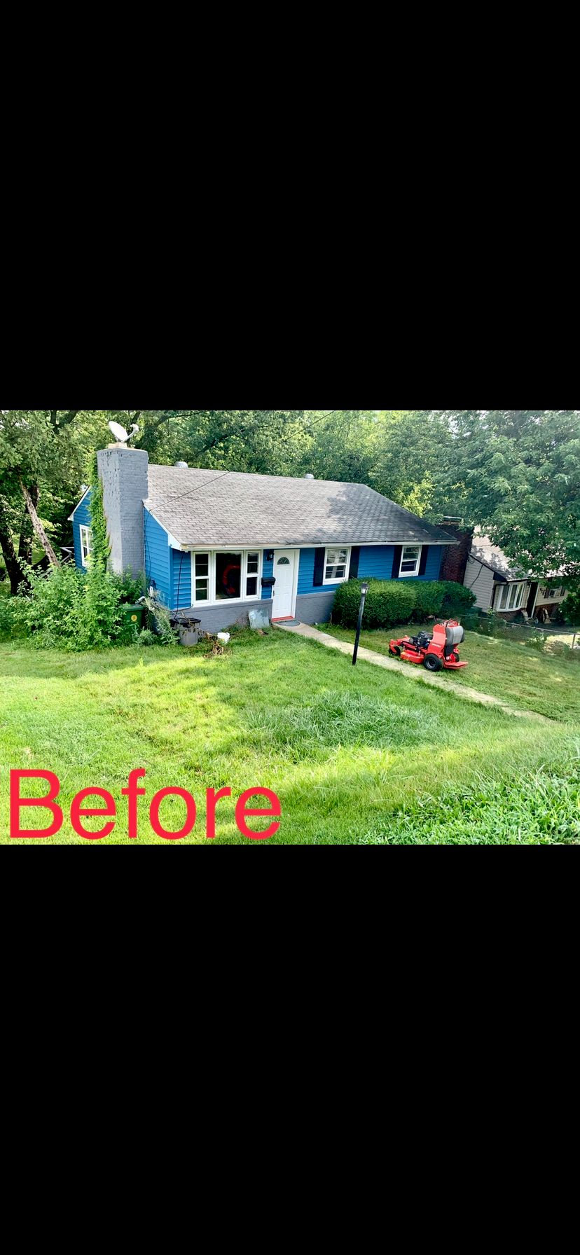 Full Cleanup and Landscaping