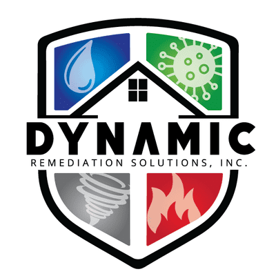 Avatar for Dynamic Remediation Solutions Inc.