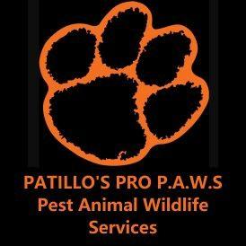 PATILLO'S PRO P.A.W.S PestAnimalWildlife Services