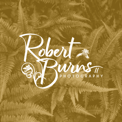 Avatar for Robert Burns II Photography & Videography, LLC