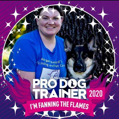 Avatar for Morgan Bayard's Training and Pet Care