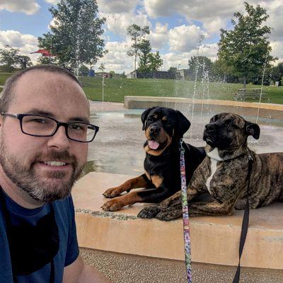 Avatar for Owana Dog Training Services