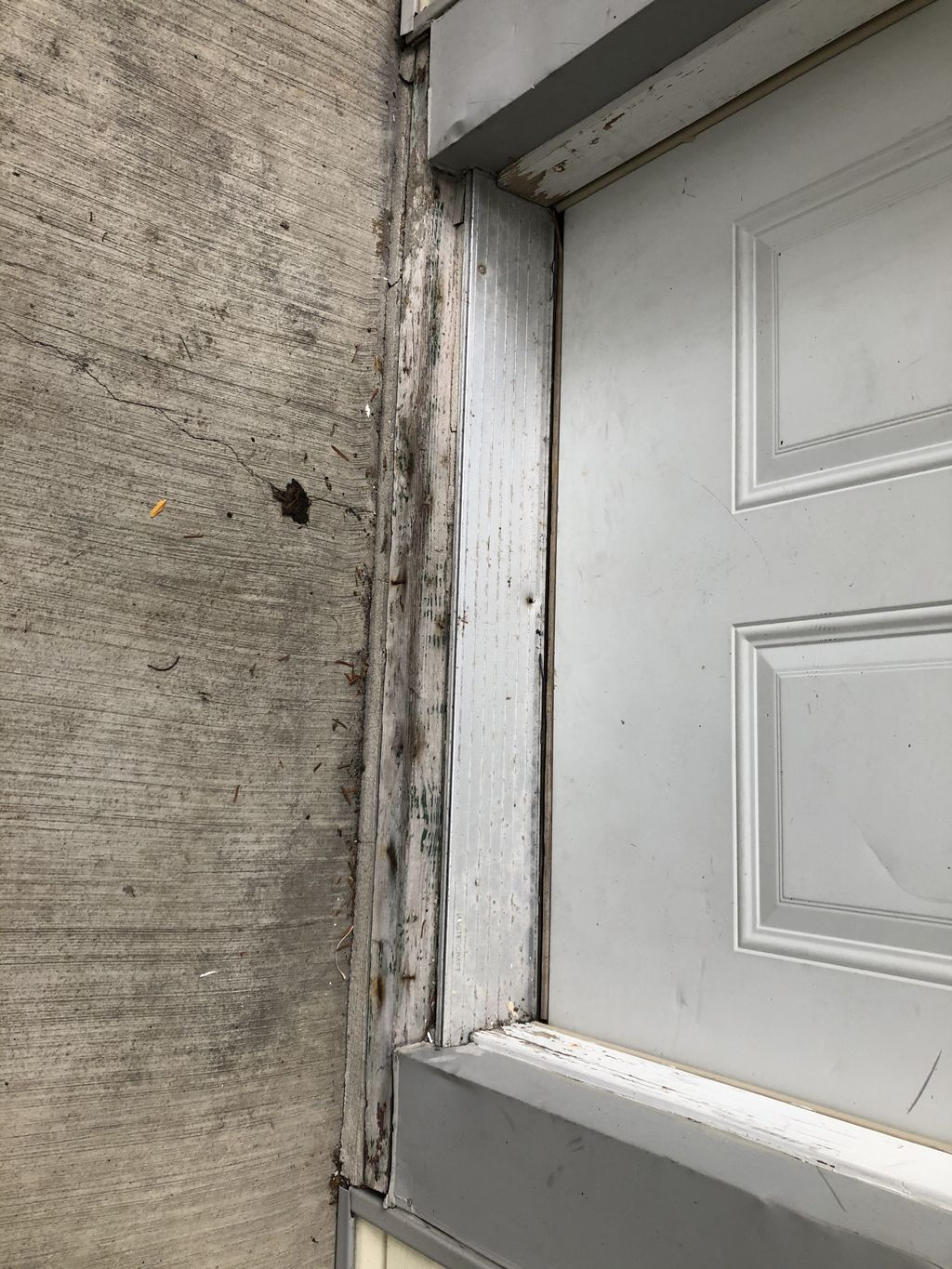 Entry Door Trim and Casing Replace