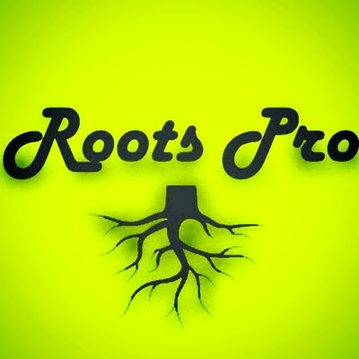 Avatar for Roots Pro