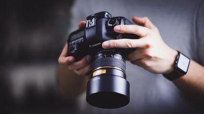 Avatar for Vishi Photography