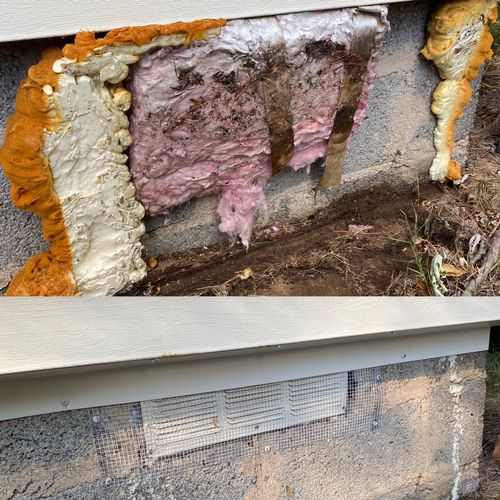 Perfect example of cheap pest control companies. You get what you pay for. Before and after, my company VS other companies.