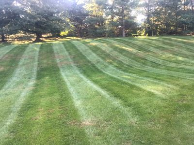 Avatar for Impressive Lawncare and Landscaping no