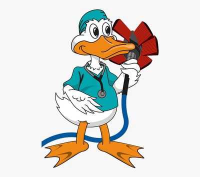 Avatar for Air duck pros