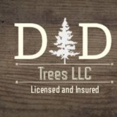 Avatar for D&D Tree llc