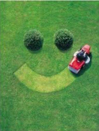 Ken's Lawn