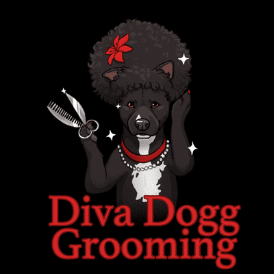 Avatar for Diva Dogg grooming Too