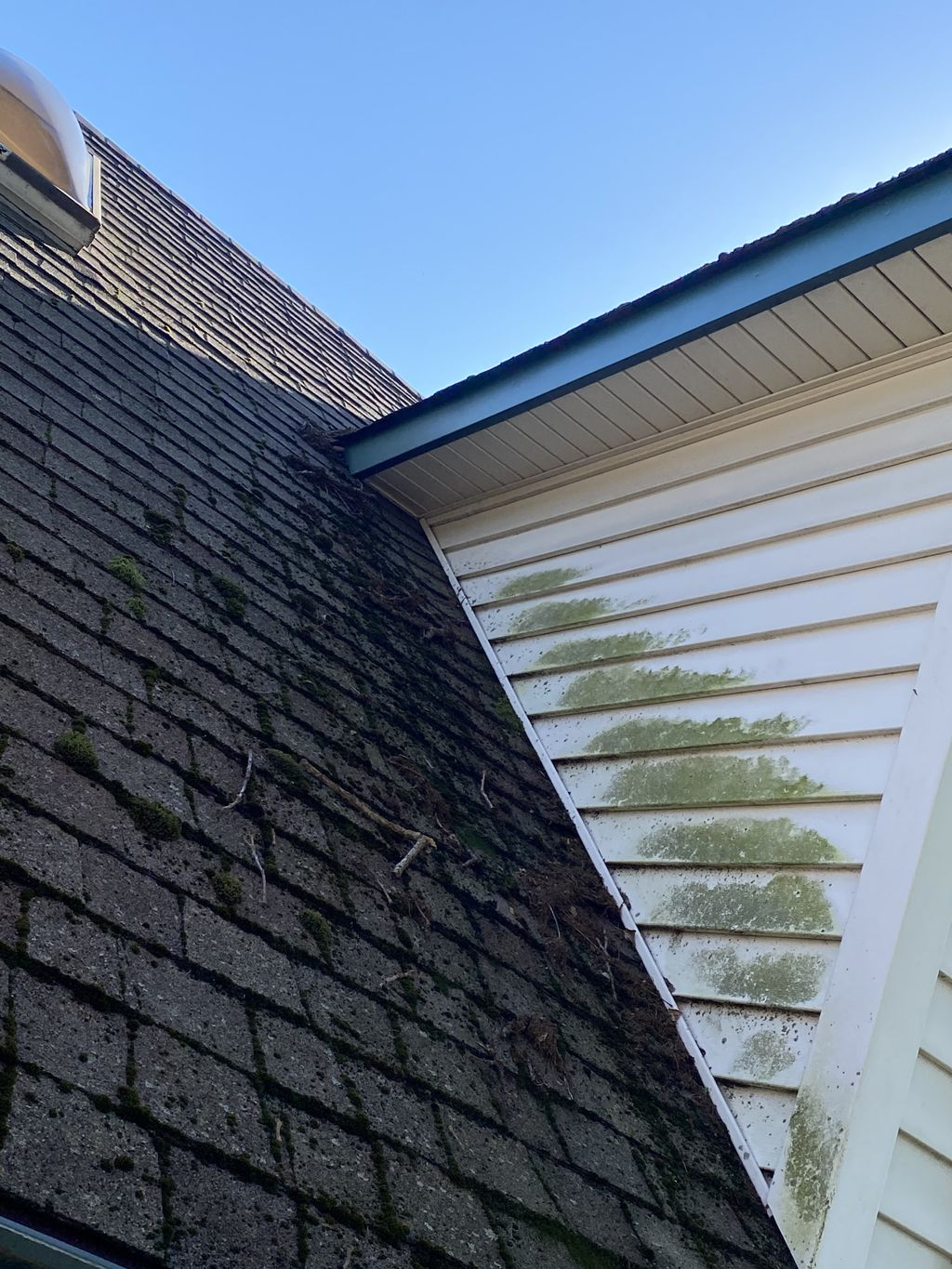 Roof cleanings