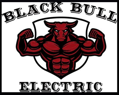 Avatar for Black Bull Electric