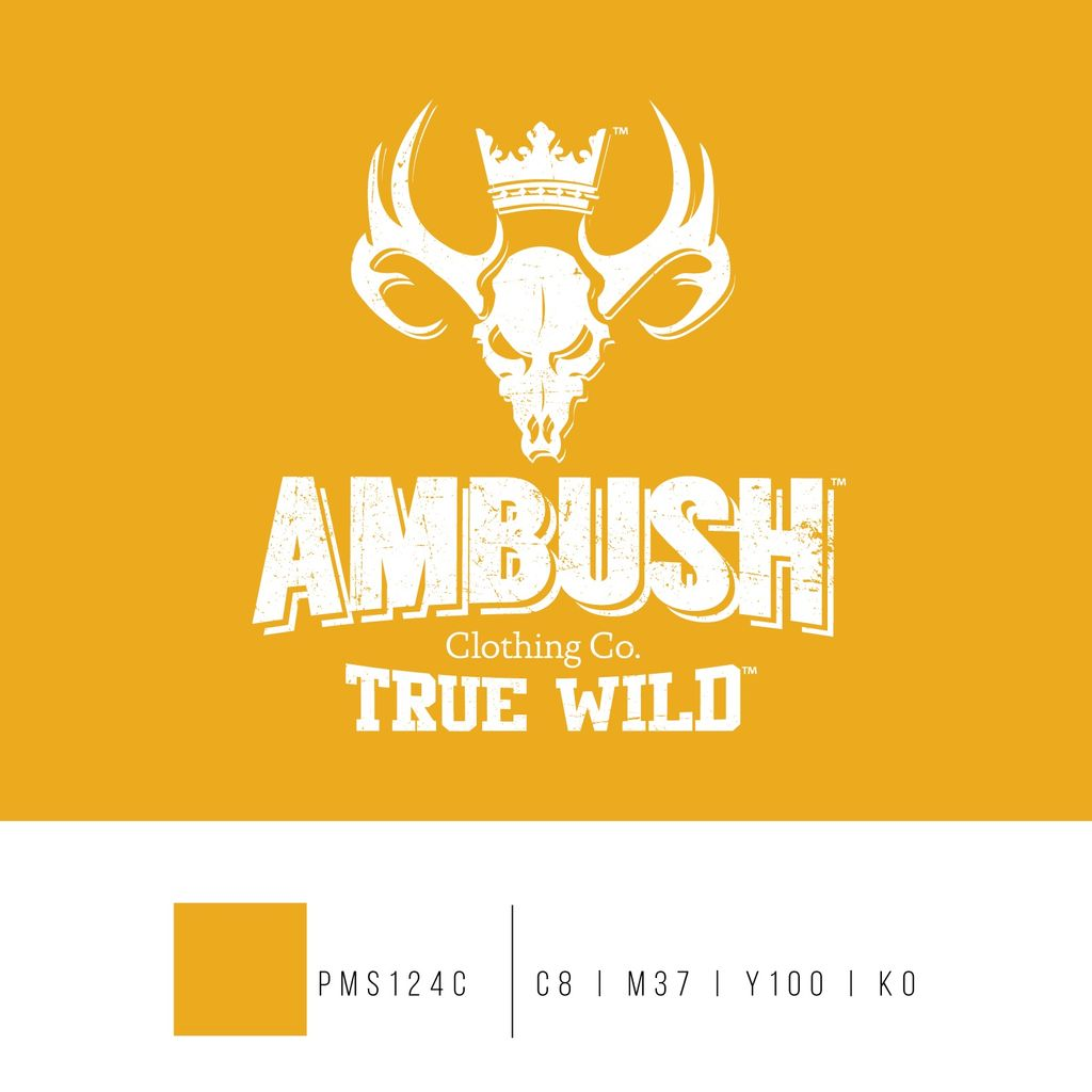 Ambush Clothing Co