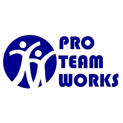 Avatar for Pro Team Works Inc.