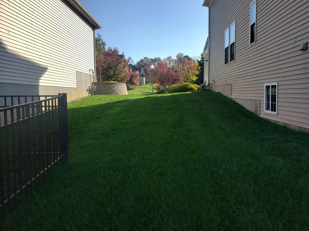 A lawn we mowed last week