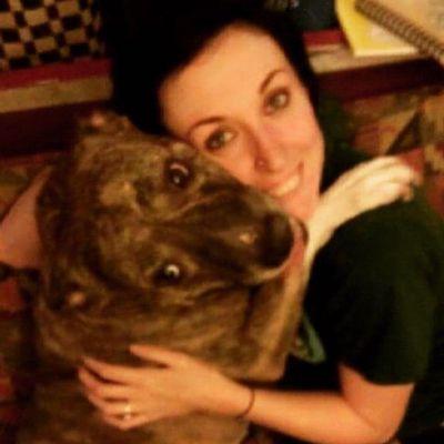 Avatar for Ashley's Dog Training
