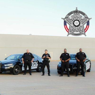 Avatar for Texas Crime Division