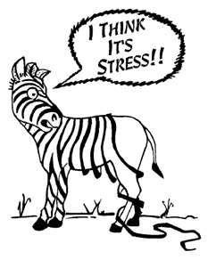 I think it's the stress.