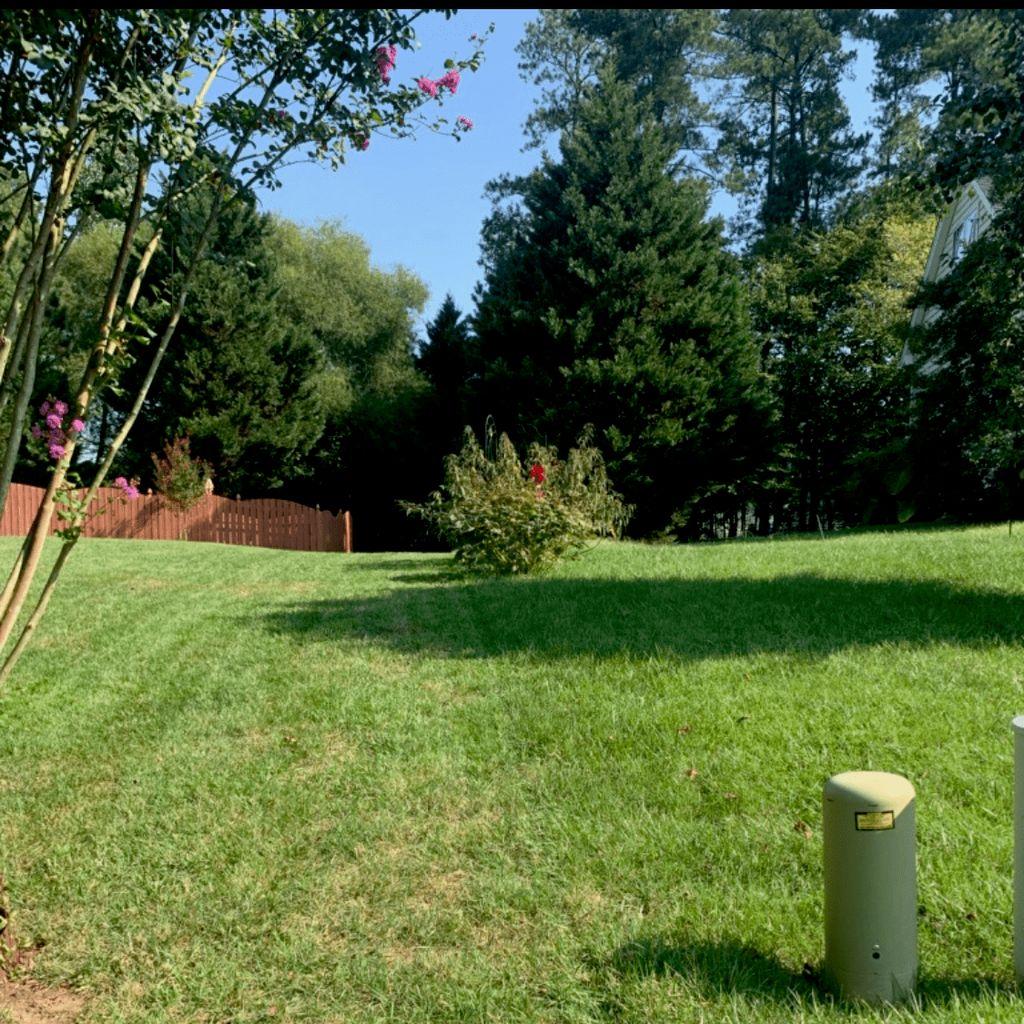 Ace Lawn