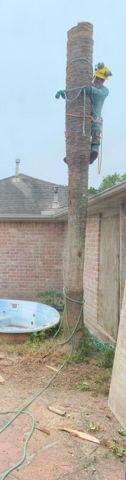 Demolition Services - Houston 2020