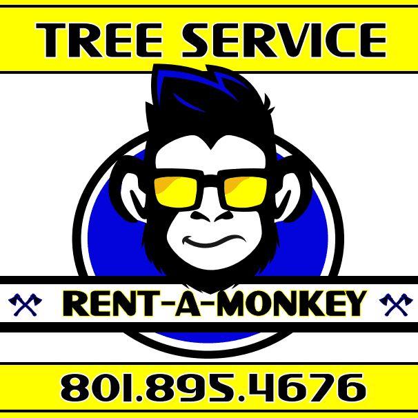 Rent A Monkey