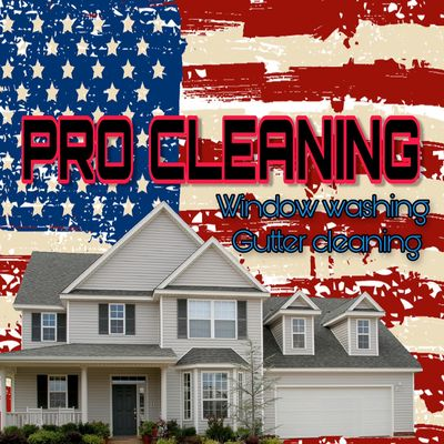Avatar for Pro Cleaning