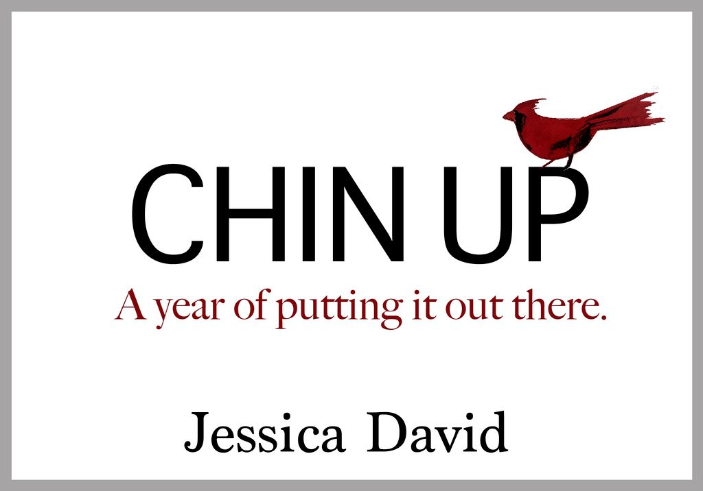 Chin Up -- A Year of Putting it Out There