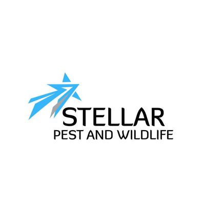 Avatar for Stellar Pest and Wildlife