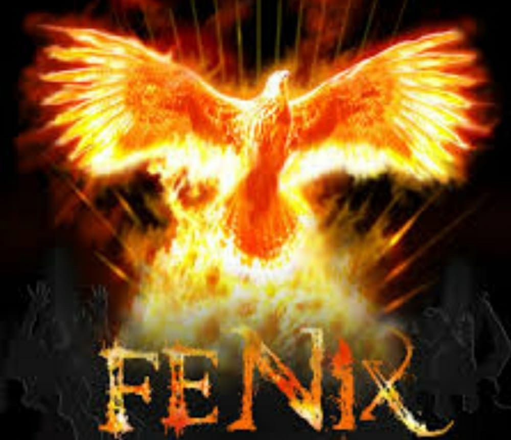 Fenix Cleaning Service LLC