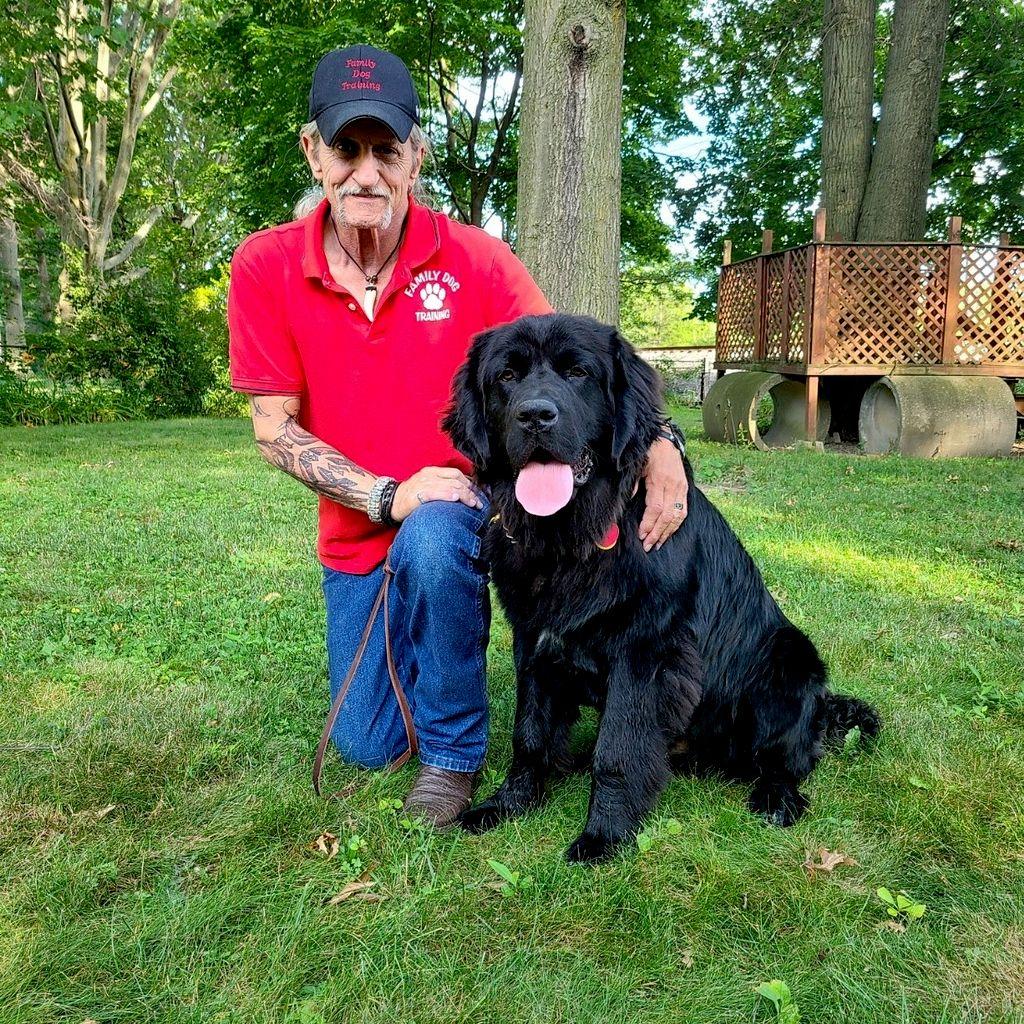Family Dog Training/Puppy Daycare