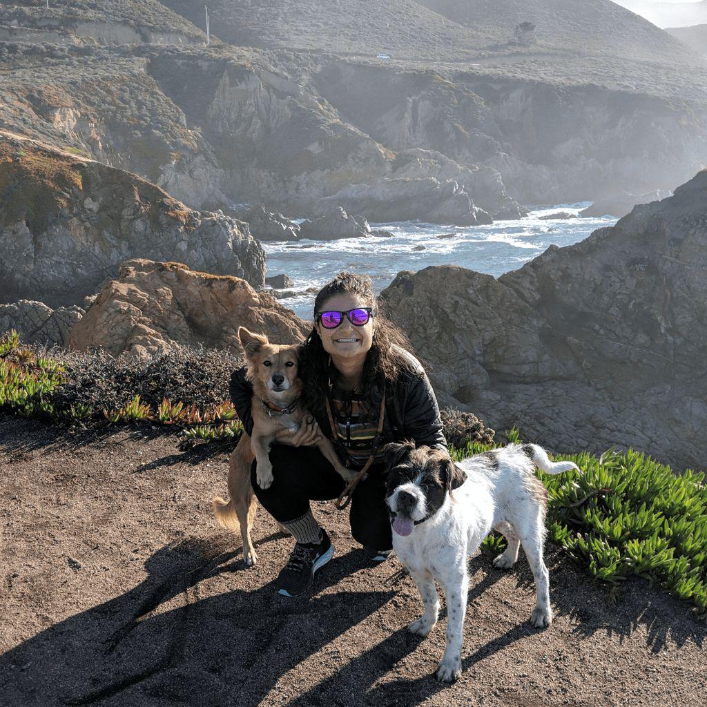 Perked Ears Companion Animal Training