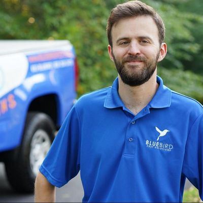 Avatar for Bluebird Pest Solutions