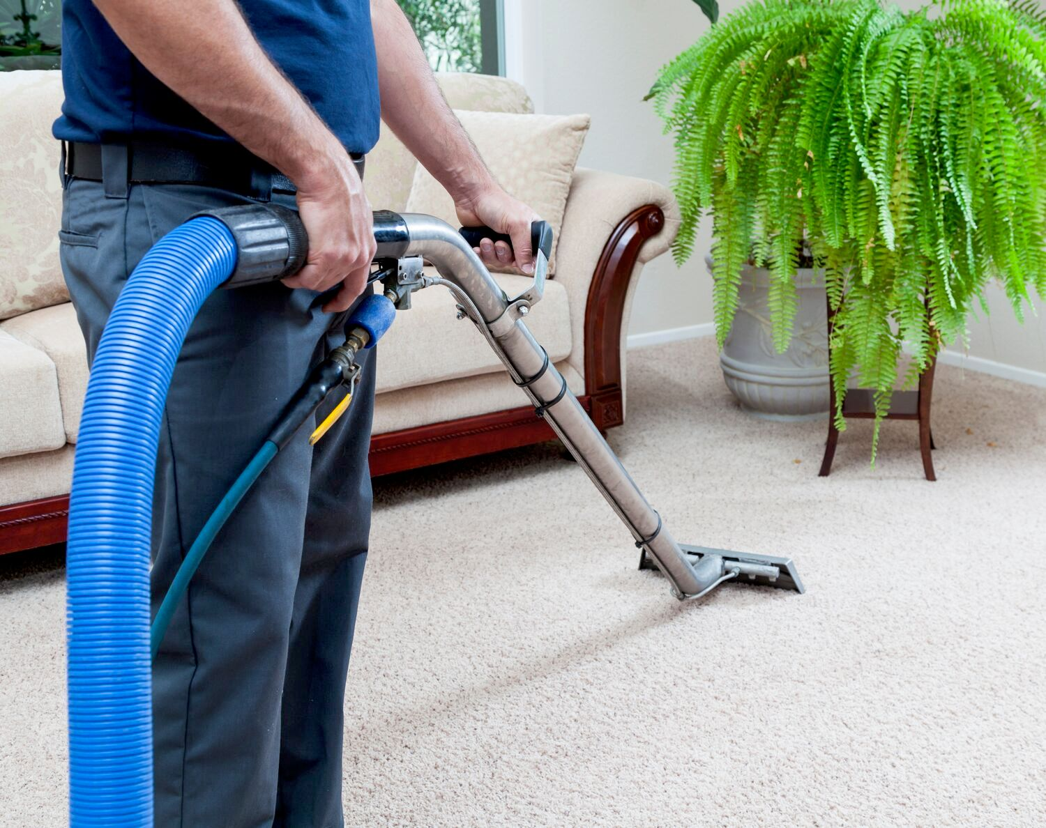 carpet cleaning steam cleaning