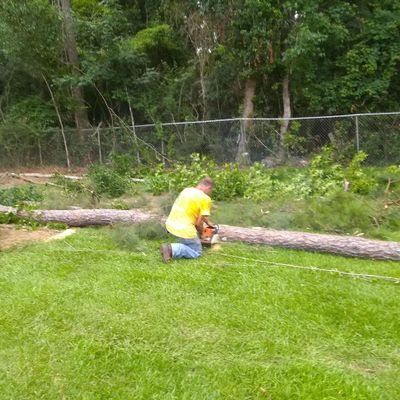 Avatar for Lonnie and jimmy's tree removal and stump grinding