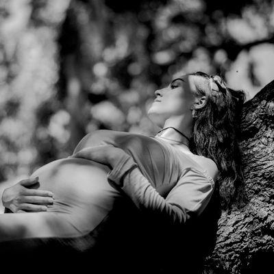 Avatar for Carolina Still Photography