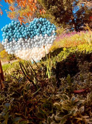 Avatar for Bay Balloons