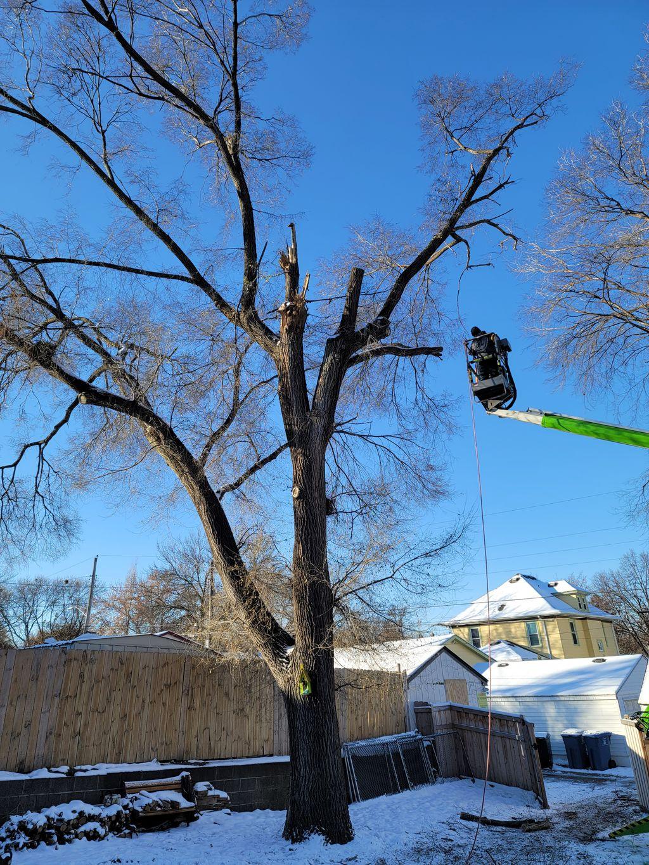 Rivetts tree service