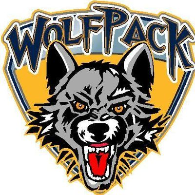 Avatar for Wolf Pack Security Consultants