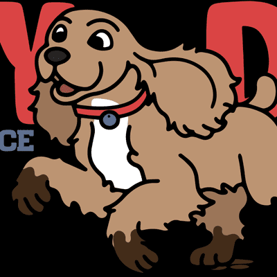 Avatar for Dirty Dog Carpet & Surface Cleaning