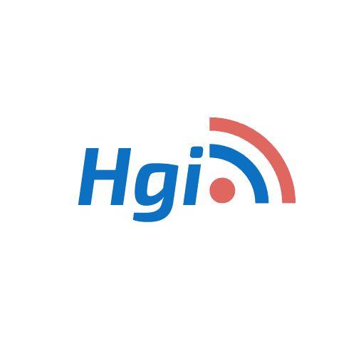HGI Solutions Inc