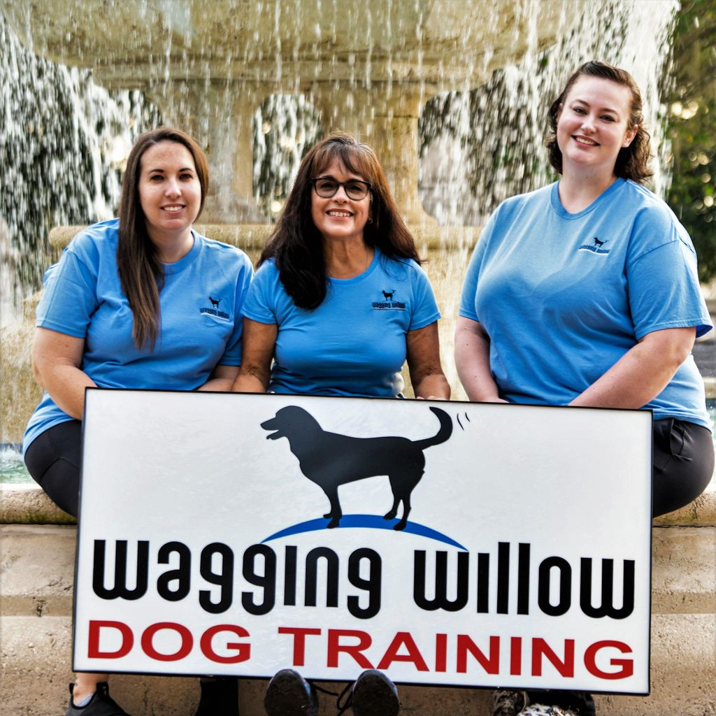 Wagging Willow LLC
