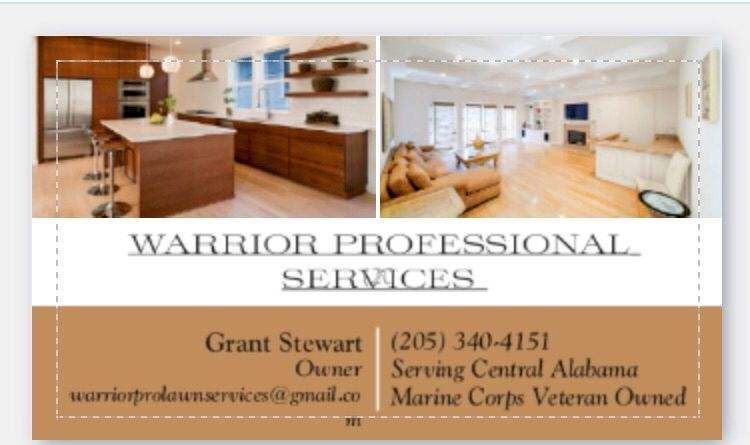 Warrior Professional Services