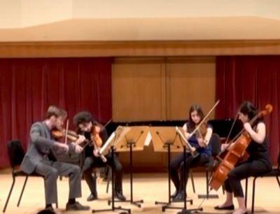 Avatar for Private Studio / Violin , Viola & spanish