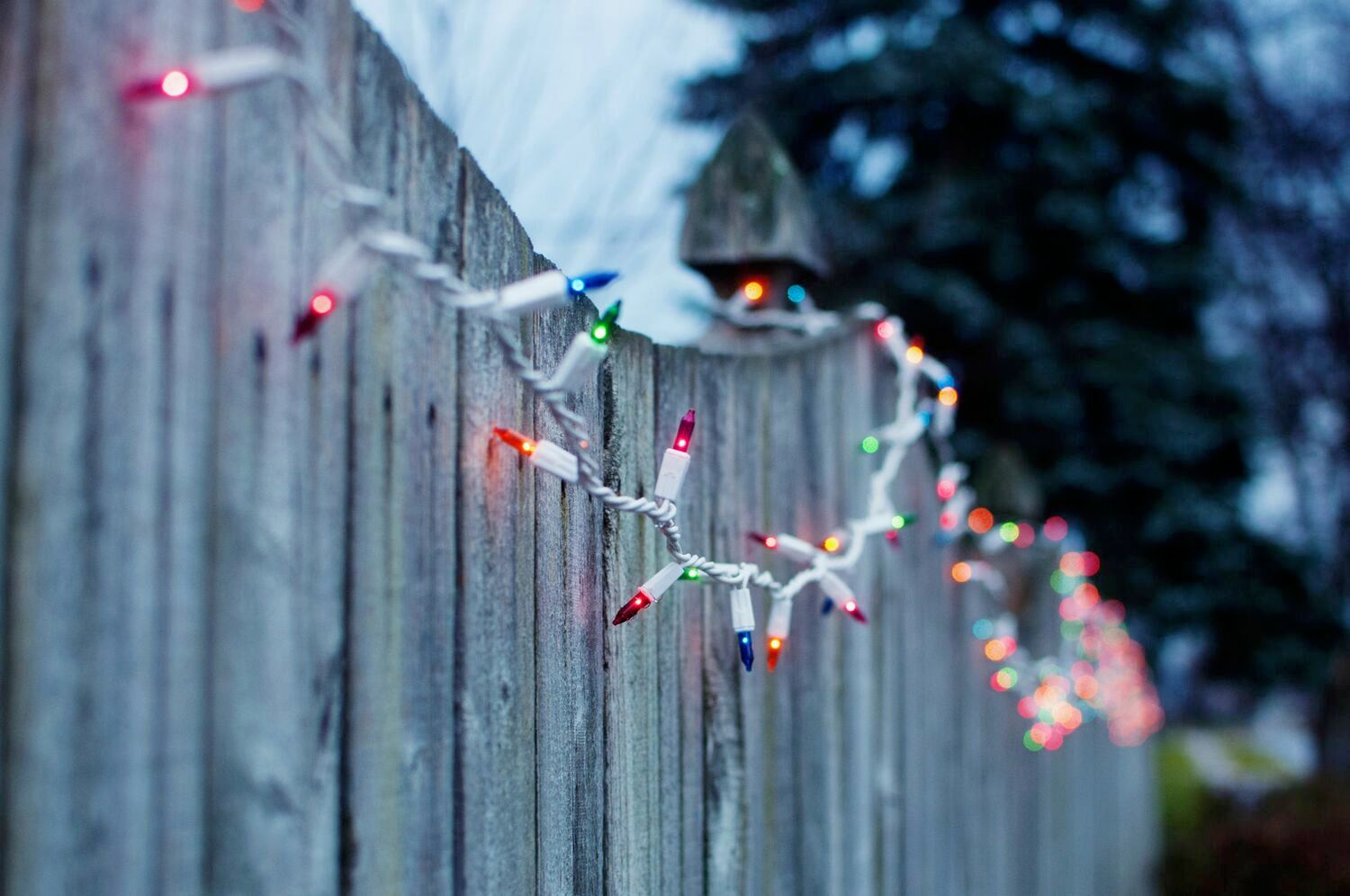 holiday string lights on fence